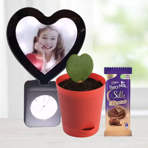 Spectacular V-day Gift of Personalized Photo Heart Lamp Clock with Hoya Plant n <br>Mousse Chocolate