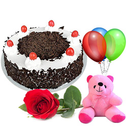Charming Single Rose with Black Forest Cake, Teddy and Balloons