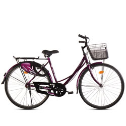 Heart-Alluring BSA Ladybird Dreamz (Junior) Bicycle<br><br>