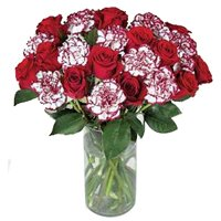 Captivating Constellation of Roses and Carnations