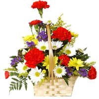 Arrangement of Carnations and Gerberas