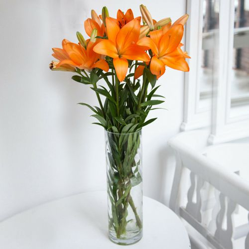 Long-Stem Lilies in a Vase