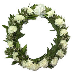 Rich Fresh Start Carnations Wreath
