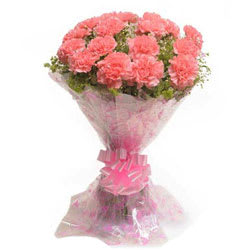 Eye-Catching Bunch of Pink Carnations