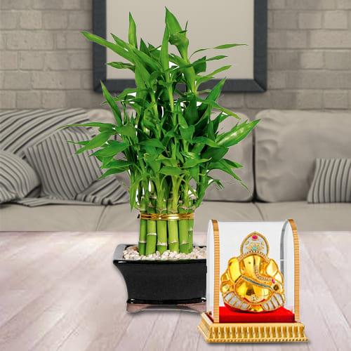 Divine Gift of Vinayak Ganesh Murti with 2 Tier Lucky Bamboo Plant