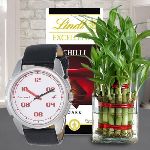 Fantastic Fastrack Watch with Bamboo Plant and Lindt Chocolate